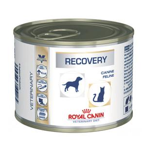 Royal Canin купить в интернет-магазине. Цены на Роял Канин