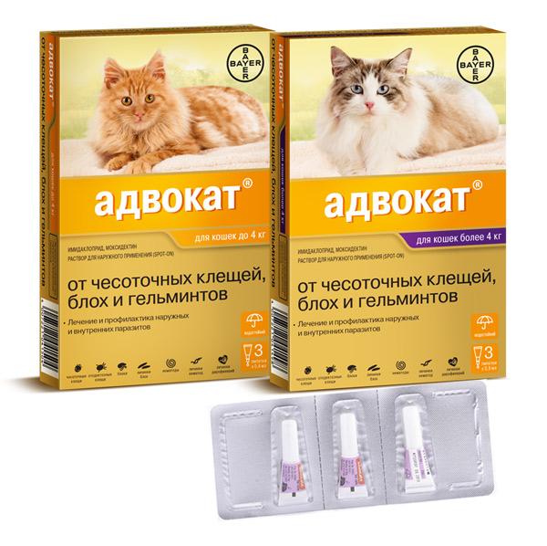 Адвокат для кошек инструкция по применению.