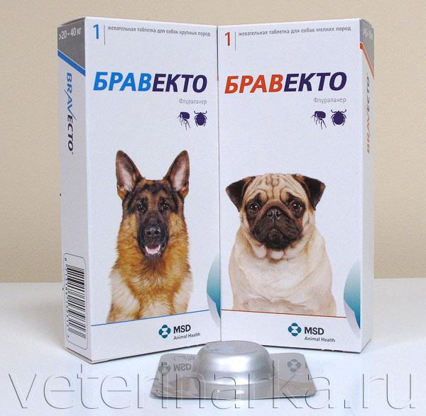 препараты от паразитов при беременности