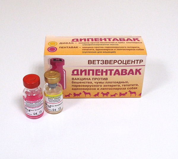 Инструкция по применению вакцины Дипентавак против бешенства, чумы плотоядн