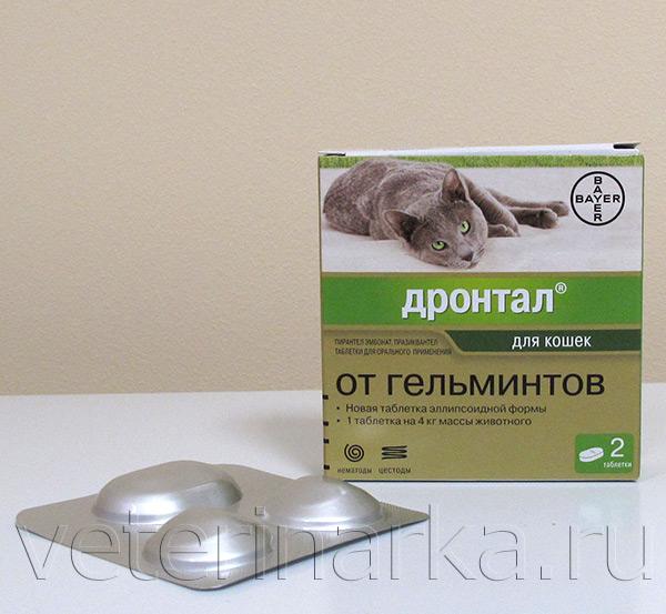 таблетки от глистов для собак каниквантел
