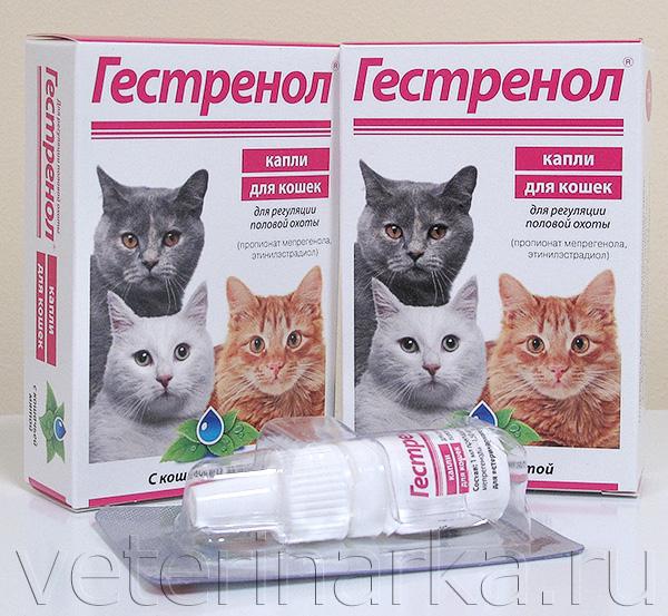 капли гестренол для кошек инструкция