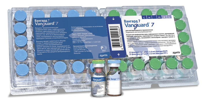 прививка для собак вангард инструкция - фото 11