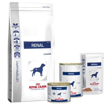 rc renal dog
